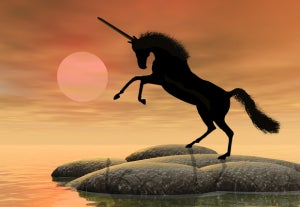 Unicorn Stampede: How FinTech Innovation and VC Warchests Fuel Markets