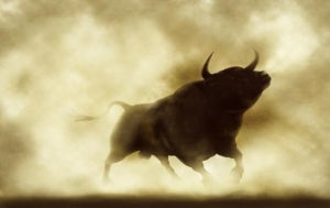PFP 10/18: Stocks Soared On Friday And For The Week On Strong Earnings