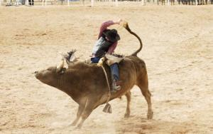 7 High-Beta ETFs to Ride the Super-Bull Stock Market