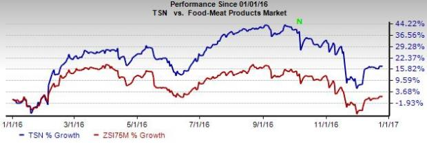 Why You Should Hold onto Tyson Foods' (TSN) Stock in 2017